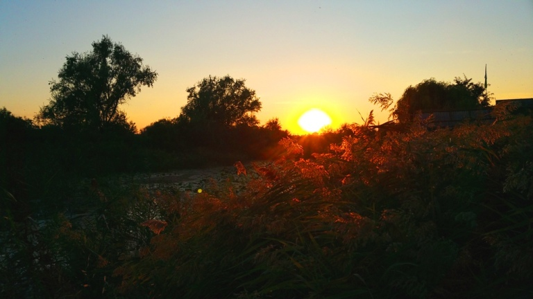 delta_sunset_6