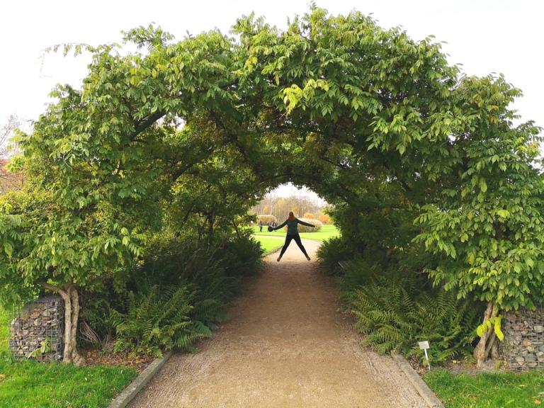 utrecht_botanicgarden_11